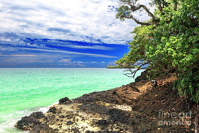 Photograph - Slice Of Heaven At Red Frog Beach Panama by John Rizzuto