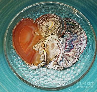 Aquatic Life Mixed Media - Sliced Agate Flower Coral On Blue by Kirk Wieland
