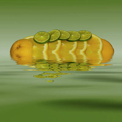 Photograph - Slices Orange Lime Citrus Fruit by David French