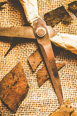 Decay Photograph - Slicing Of Segmented Leaves by Jorgo Photography - Wall Art Gallery