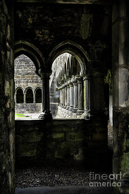 Photograph - Sligo Abbey Interior by RicardMN Photography
