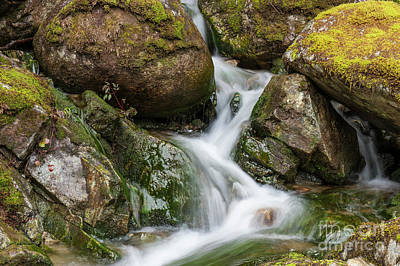 Photograph - Slimy Mossy Falls by Rod Wiens