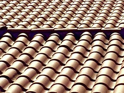 Slip Away Photograph - Slip Sliding Away On A Red Tile Roof by Russell Keating