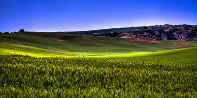 Sliver Of Sunlight On The Palouse Hills Print by David Patterson