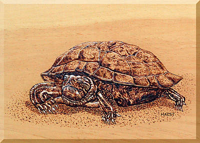 Pyrography - Slow But Sure Wins The Race by Ron Haist