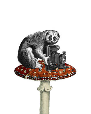 Toadstool Digital Art - Slow Loris With Antique Camera by Madame Memento