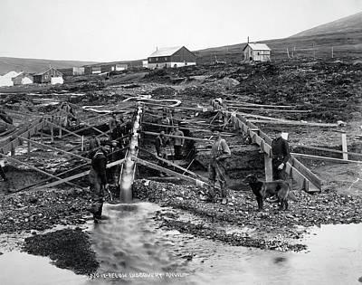 Sluicing For Gold At Anvil Creek - Nome Alaska  1916 Print by Daniel Hagerman