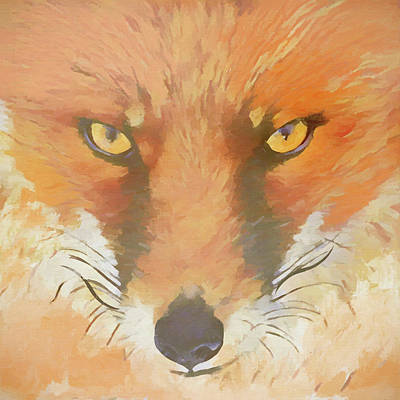 Painting - Sly Fox by Dan Sproul