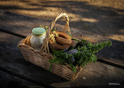 Photograph - Small Basket by Alexander Fedin