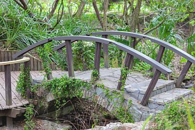 Photograph - Small Brown Bridge by Raphael Lopez