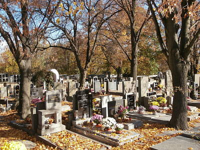 The Beatles - Small cemetery with autumn leaves and evening sun by Miroslav Nemecek