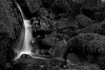 Photograph - Small Fall by Bob Cournoyer