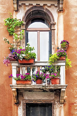 Photograph - Balcony Garden by Maria Coulson