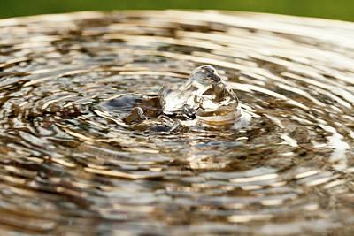 Photograph - Small Fountain In A Garden by Yoel Koskas