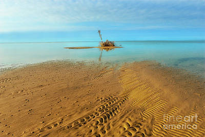 Photograph - Small Island On The Outer Banks by Dan Carmichael