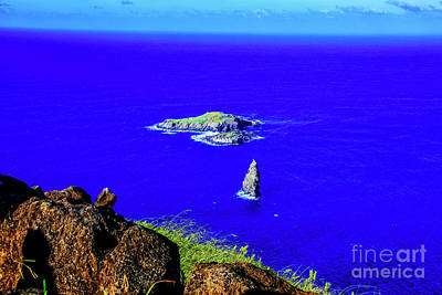 Photograph - Small Island by Rick Bragan