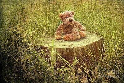 Small Little Bears On Old Wooden Stump  Art Print by Sandra Cunningham