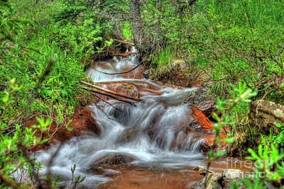 Photograph - Small Mountain Stream by Tony Baca