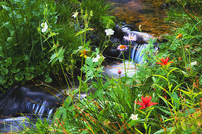 Photograph - Small Mountain Stream by Utah Images