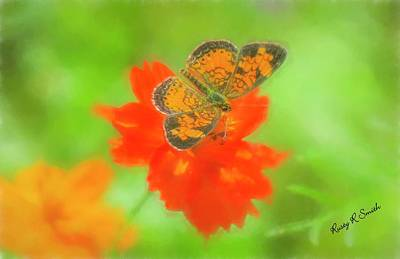Digital Art - Small Orange And Black Moth On Red Flower. by Rusty R Smith