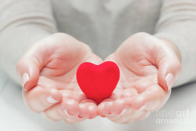 Photograph - Small Red Heart In Woman's Hands In A Gesture Of Giving, Protecting by Michal Bednarek