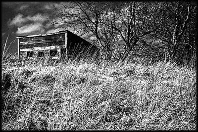 Photograph - Small Shed At Prairies Edge by Roger Passman