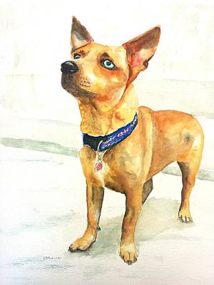 Watercolor Pet Portraits Wall Art - Painting - Small Short Hair Brown Dog by Carlin Blahnik CarlinArtWatercolor