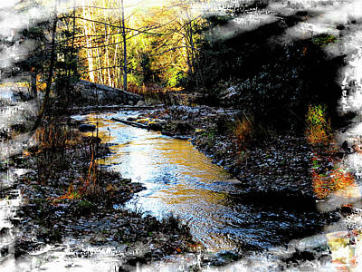 Photograph - Small Stream And Late Afternoon Sun by Rusty R Smith
