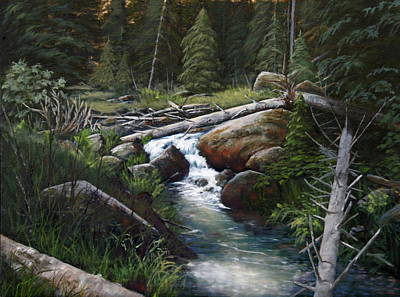 Small Stream In The Lost Wilderness 070810-1612 Art Print by Kenneth Shanika