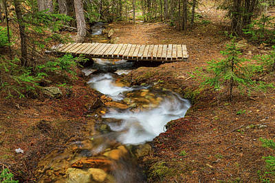 Photograph - Small Stream Nature Walking Bridge by James BO Insogna