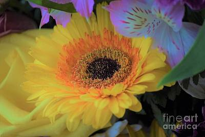 Photograph - Small Sunflower by Patti Whitten