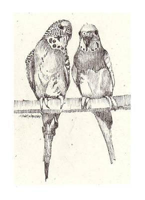 Parakeet Drawing - Small Talk by Deborah Wetschensky