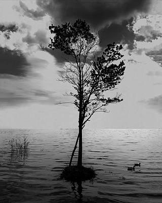 Wall Art - Digital Art - Small Tree On A Tiny Island by George Michael