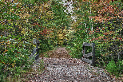 Art Print featuring the photograph Small Trestle Along Rail Trail by Jeff Folger
