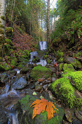 Small Waterfall At Lower Lewis River Falls Art Print by David Gn