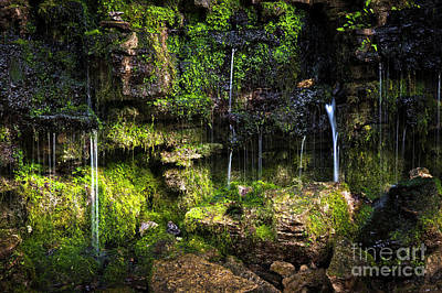 Photograph - Small Waterfall by Elena Elisseeva