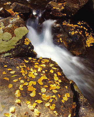 Small Waterfall In Autumn Art Print by Douglas Pulsipher
