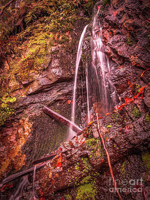 Photograph - Small Waterfall In The Forest by Claudia M Photography