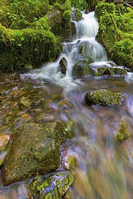 Photograph - Small Waterfalls Along Wahkeena Creek by David Gn