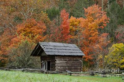 Photograph - Small Wood Cabin In The Woods by Patricia Twardzik