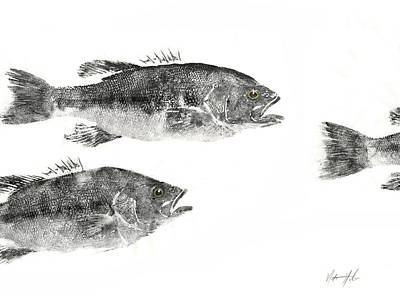 Smallmouth Print by Nate Huber
