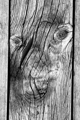 Photograph - Smile For The Camera Bw by Mary Bedy
