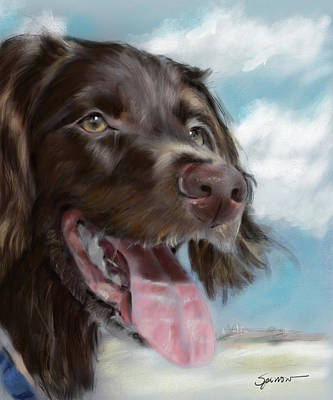 Pets Art Digital Art - Smiles Ashore by Mary Sparrow