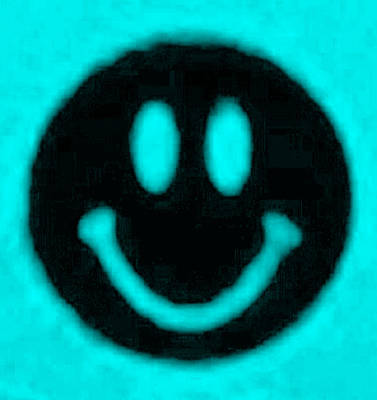 Photograph - Smiley Cyan by Rob Hans