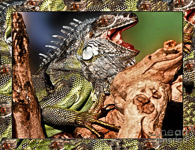 Smiling Adult Iguana  Art Print by Carol F Austin