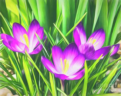 Digital Art - Smiling Violets by Mary Raderstorf