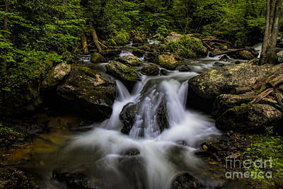 Photograph - Smith Creek by Barbara Bowen