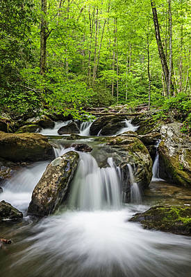 Photograph - Smith Creek, Springtime by Tod Colbert