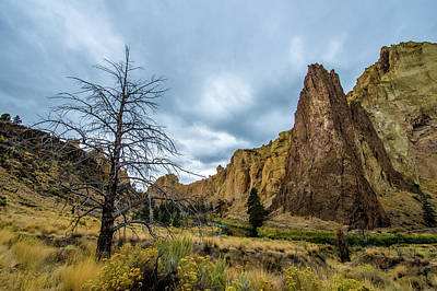 Photograph - Smith Rock State Park by Jedediah Hohf