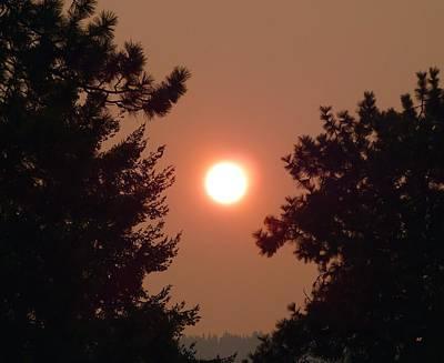 Photograph - Smoke Shrouded Sun   by Will Borden